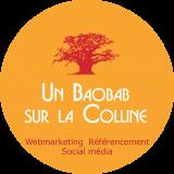 UN-BAOBAB-SUR-LA-COLLINE-Webmarketing-Referencement-SEO-et-reseaux-sociaux-Lyon