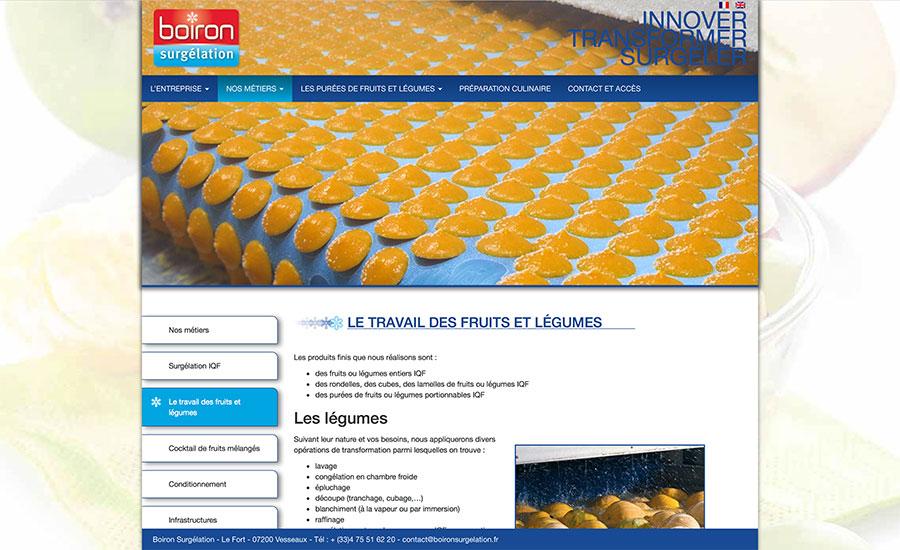Boiron-page4